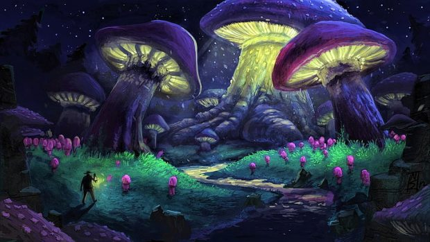 https://www.wallpaperflare.com/artistic-fantasy-forest-mushroom-night-purple-wallpaper-pvyzs