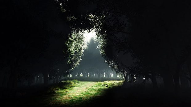 https://www.wallpaperflare.com/darkness-to-light-forest-exit-entrance-none-1920x1080-nature-forests-hd-art-wallpaper-sfbxm